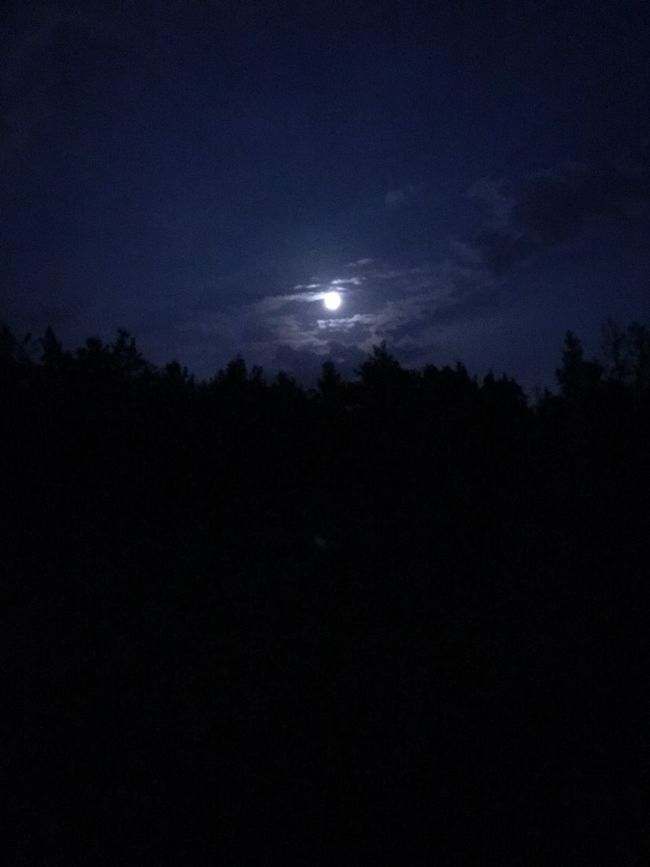 Moon Tranquil Scene Silhouette Tranquility Scenics Beauty In Nature Night Sky Dark Moonlight Sun Nature Majestic Full Moon Cloud Outline Outdoors Cloud - Sky Growth Blue My Photography Sweden Purist No Edit No Filter Faro