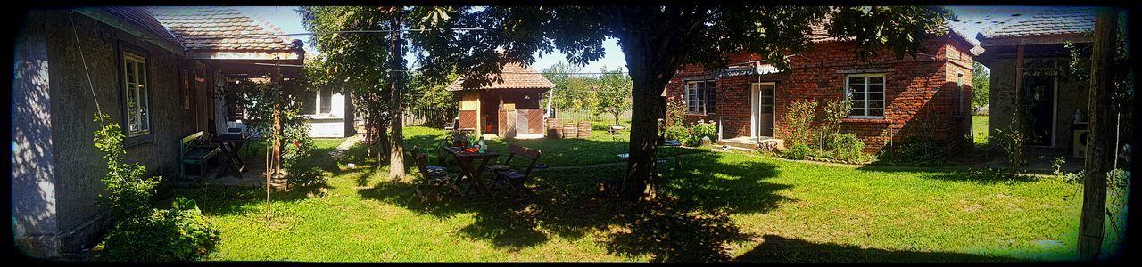 Architecture House Tree Lawn Nature Vilage Built Structure Building Exterior Vilage House Farm Life Farmhouse