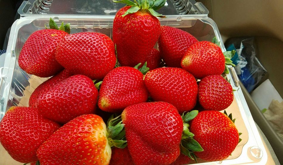 Strawberries and Strawbooties Fruit Strawberry Strawberries Healthy Eating Nutrition Tasty Bright Fresh Ujustgotkaied