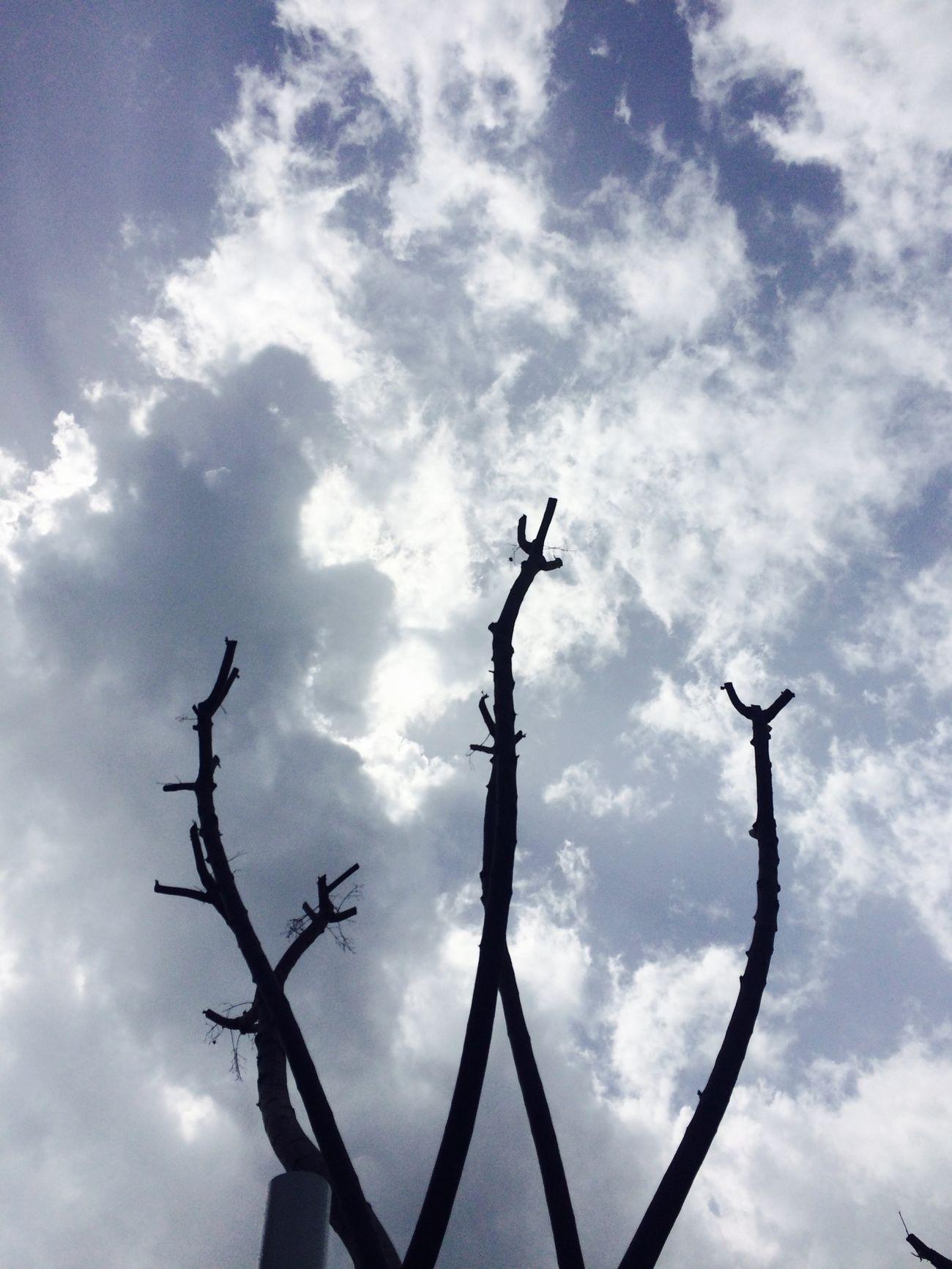 Turkey Clouds And Sky Sky Huzur Gokyuzu Mavibeyaz