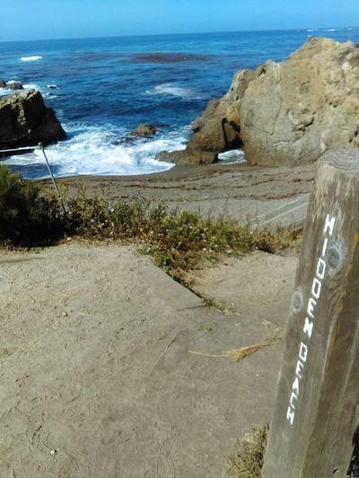 Point Lobos-Hidden Beach