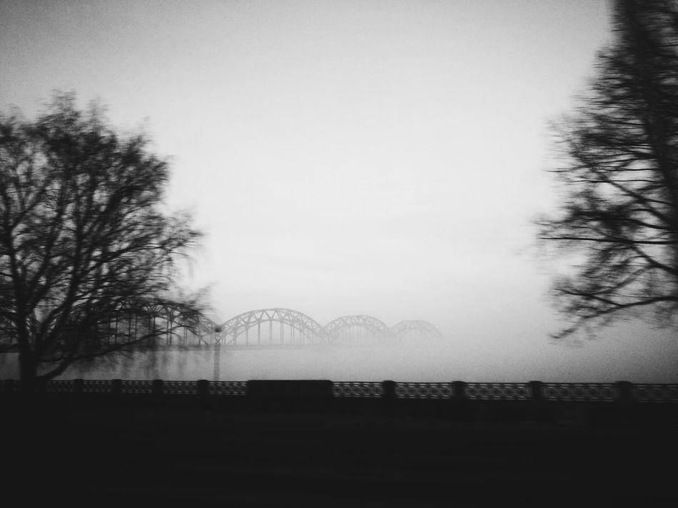 The Week On EyeEm RigaCity Latvia Foggy
