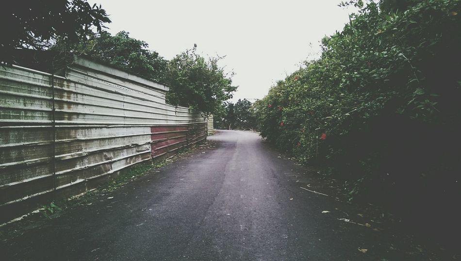 One Road Two Ways Two Walls Enjoying Life Check This Out Hi! Taking Photos 艸木森森 Yilan, Taiwan Running