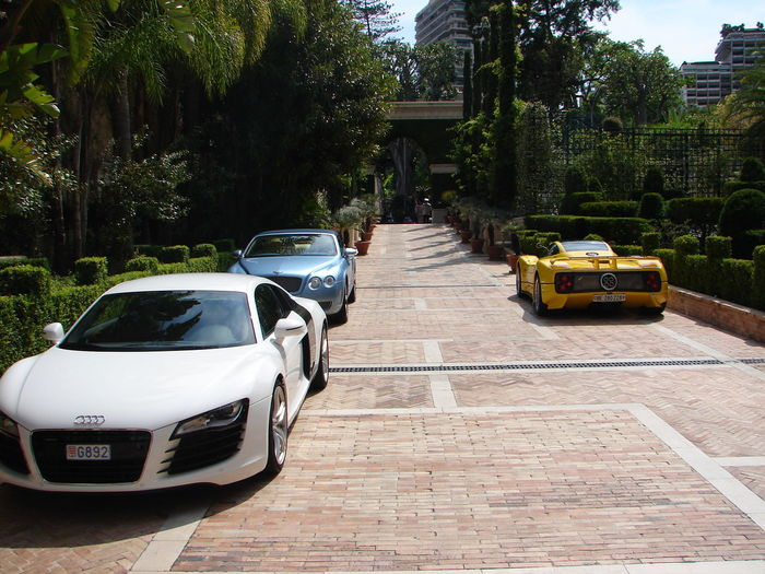 Audi R8 Bentley Continental GT Built Structure City City Life Day Diminishing Perspective Empty Growth Narrow Nature No People Outdoors Pagani Zonda The Way Forward Tree Vanishing Point