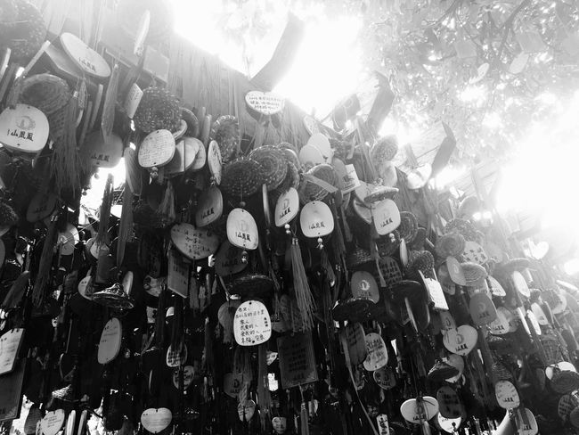 Chinese Wishing Tree at Phoenix Mountain in Baoan - Shenzhen, China Wish Tree Traditional Culture Buddhism Buddhist Temple Shenzhen China Mountain Chinese BaoAn Temple Phoenix Mountain Traditional Chinese Tree Traditionally Chinese Chinese Culture Chinese Style Wishing Tree Wishes Hanging Black And White