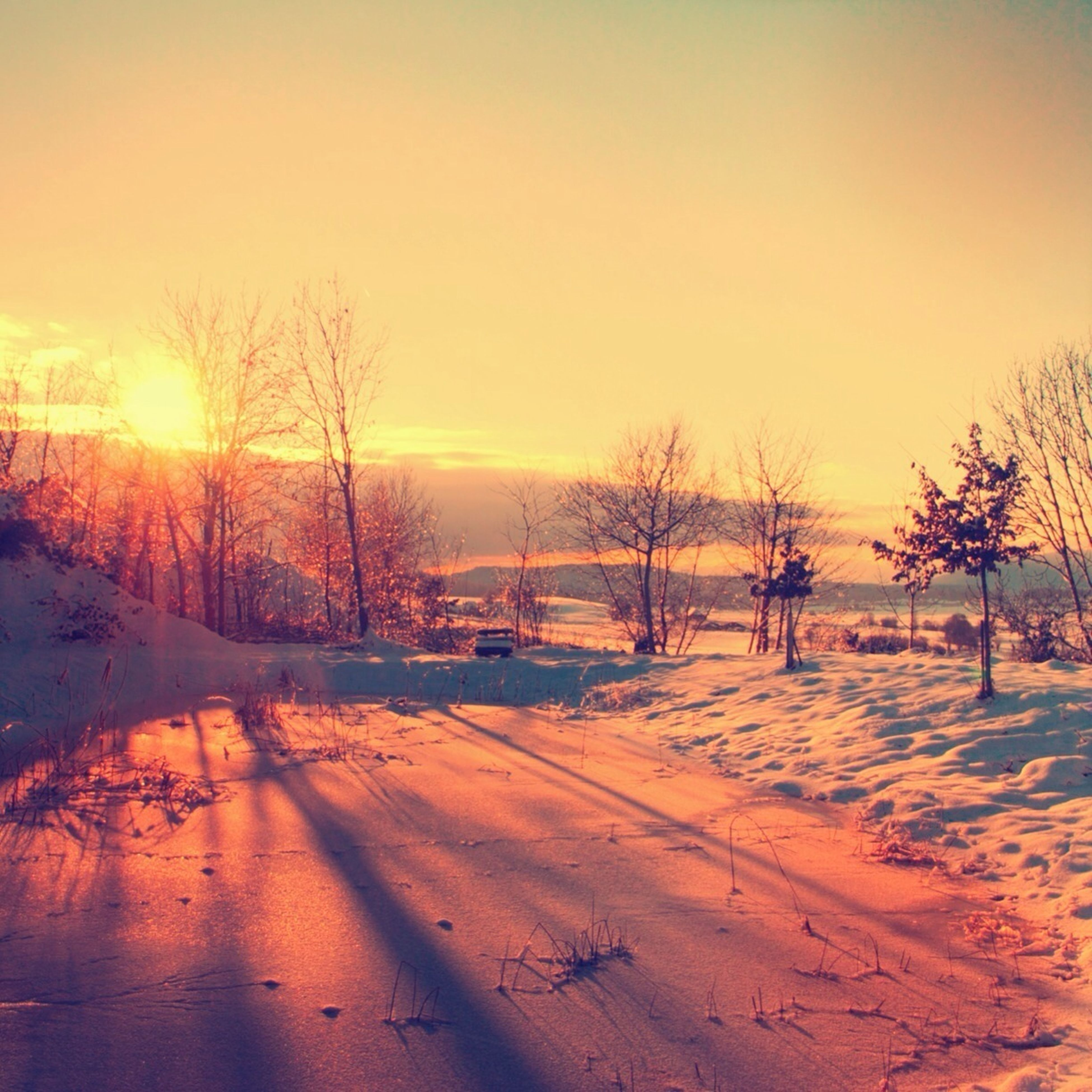 sunset, snow, winter, cold temperature, sun, tranquil scene, bare tree, tranquility, scenics, beauty in nature, tree, orange color, season, nature, landscape, clear sky, sunlight, field, idyllic, sky