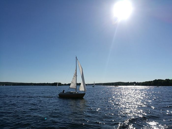 Where to today? Sailboat Sailing Sun Clear Sky Water Summer Yacht