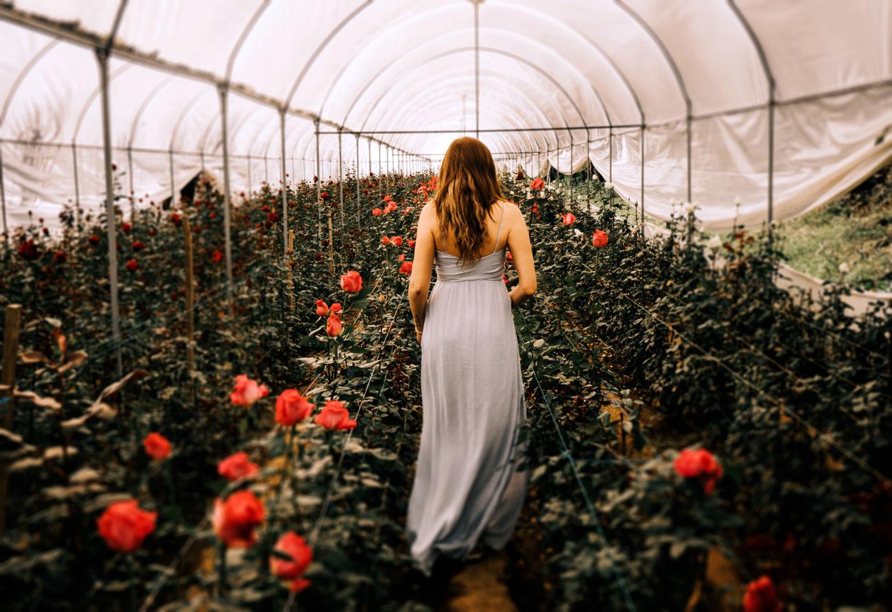 Lilí Beauty In Nature Calmness Flower Greenhouse Long Dress Nature Plant Woman Portrait Woman Portraiture