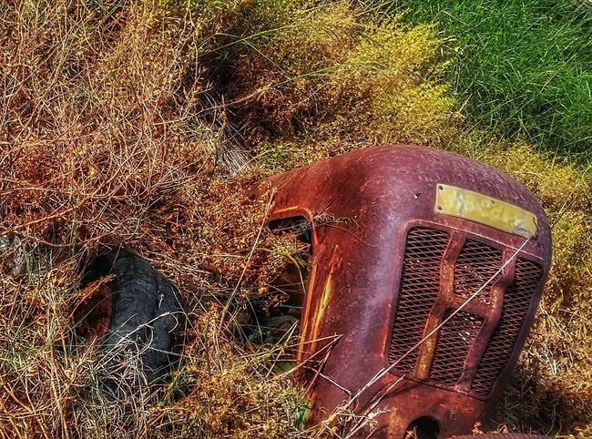 Taking Photos Enjoying Life Showcase April The Week On Eyem EyeEm Best Shots Nature Photography Showing Imperfection My Own Style Of Beauty Nature Beauty Thinks I Like Old Tractors
