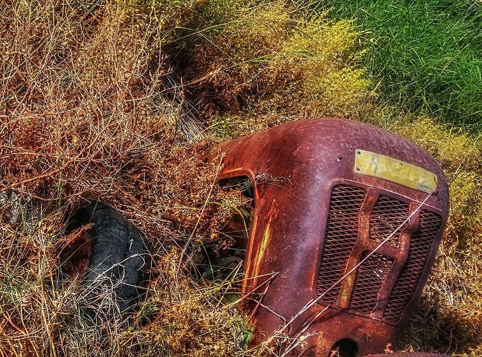 Taking Photos Enjoying Life Showcase April The Week On Eyem EyeEm Best Shots Nature Photography Showing Imperfection My Own Style Of Beauty Nature Beauty Thinks I Like Old Tractors