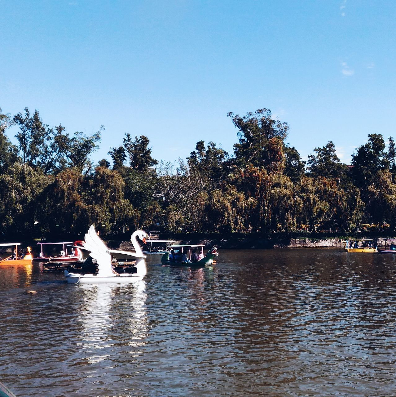 tree, nautical vessel, water, river, transportation, waterfront, mode of transport, outdoors, large group of people, clear sky, day, pedal boat, moored, tranquility, vacations, nature, sky, real people, scenics, sailing, beauty in nature, people