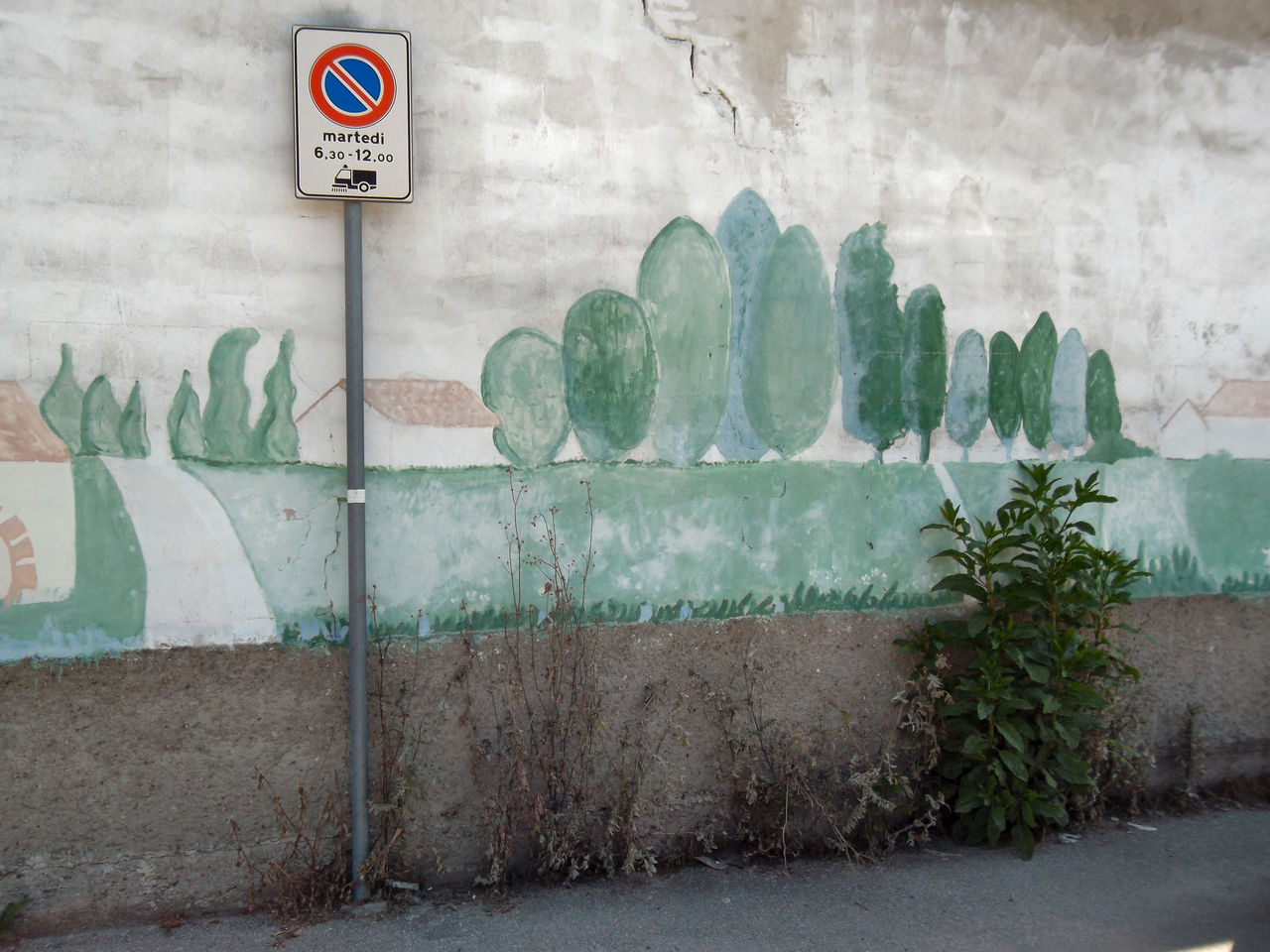 Quando si dice la prospettiva ArtWork Close-up Contaminating In Any Way Creativity Day Deterioration Green Color Growing Growth Murales Nature No People Outdoors Painting Perspective Changes Everything Plant Streetart Wall Art
