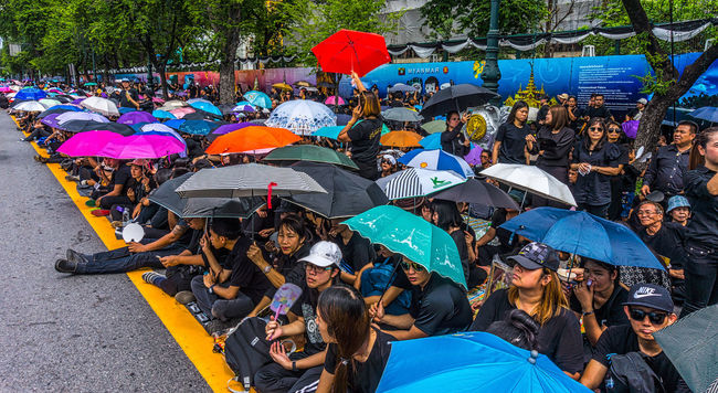 Crowds with to sing the Royal Anthem in honour of HM King Bhumibol Adulyadej. Adult Bangkok Crowd Day High Angle View Horizontal King Bhumipol Adulyadet Large Group Of People Men Outdoors People Person Real People Sunlight Thailand Togetherness Umbrella Umbrellas