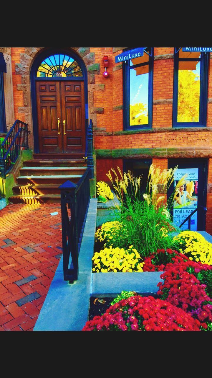entrance, door, entry, architecture, doorway, house, built structure, steps, no people, plant, building exterior, outdoors, day, open door