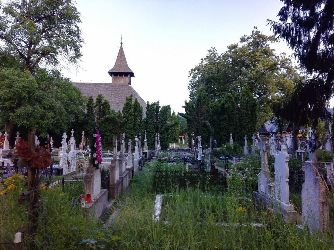 Bistrita cimitery, near Piatra Neamt, Romania Architecture Beauty In Nature Bistrita Built Structure Cimitery Day Grass Grave Crosses Green Color Growth Nature No People Outdoors Plant Romanian Cimetery Scenics Sky Tourism Tranquil Scene Tranquility Travel Destinations Tree