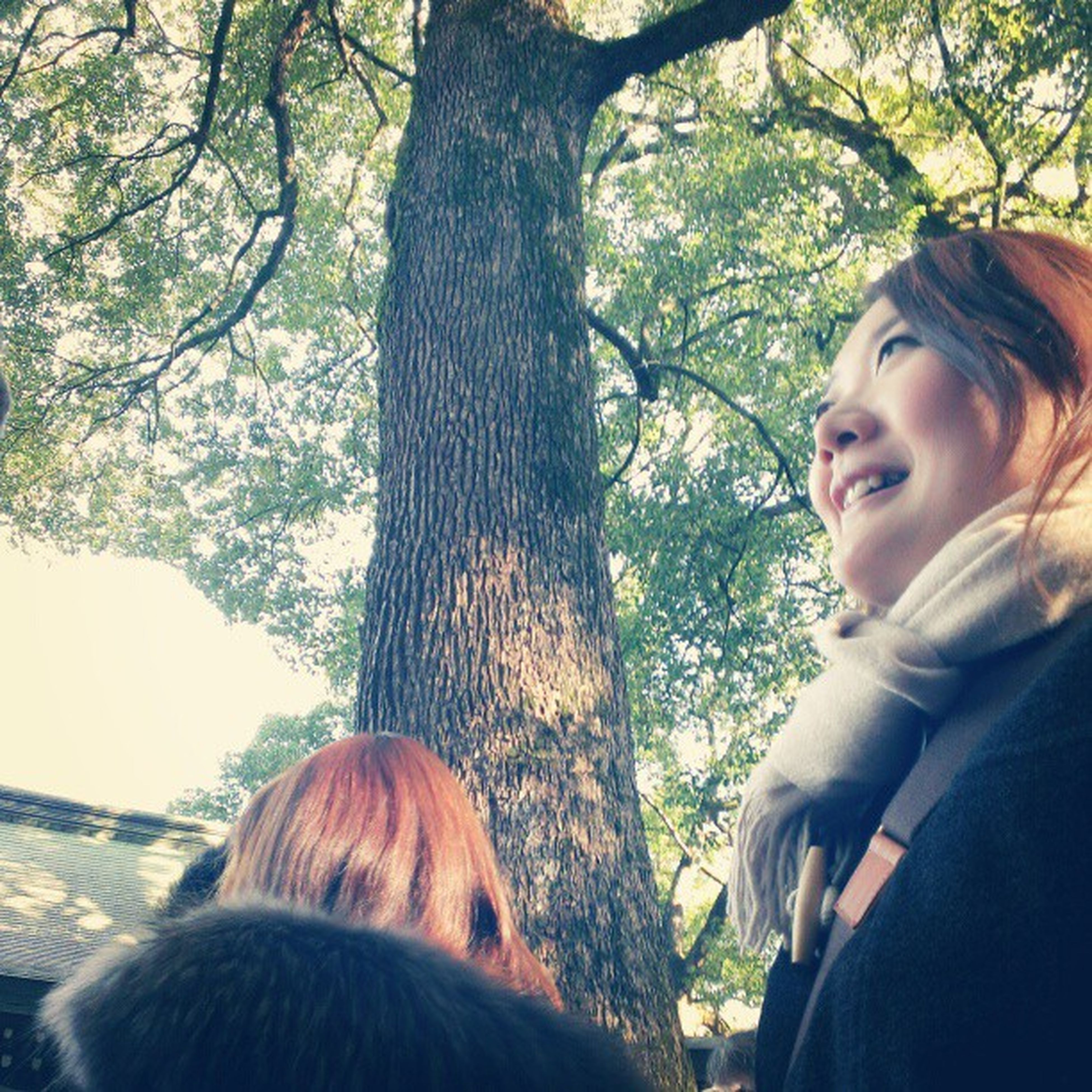 tree, lifestyles, headshot, leisure activity, person, young adult, casual clothing, tree trunk, portrait, young women, looking at camera, focus on foreground, forest, head and shoulders, day, smiling, front view, waist up