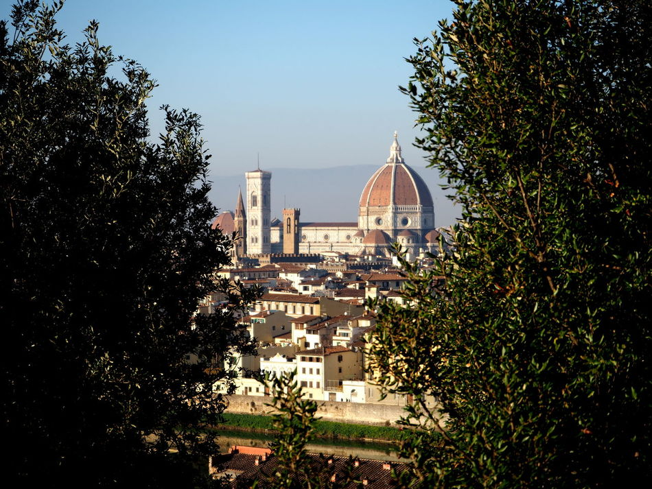 cathedral of florence in the trees Architecture Basilic Bridge Buildings Cathedral City Florence Holy Cross Italy Italy4fun No People Outdoors Picoftheday Pitti Pitti Palace Santa Croce Seagulls Sky Sky And Clouds The Medici Family Tuscany Uffizi Uffizi Gallery Vasari Corridor Water