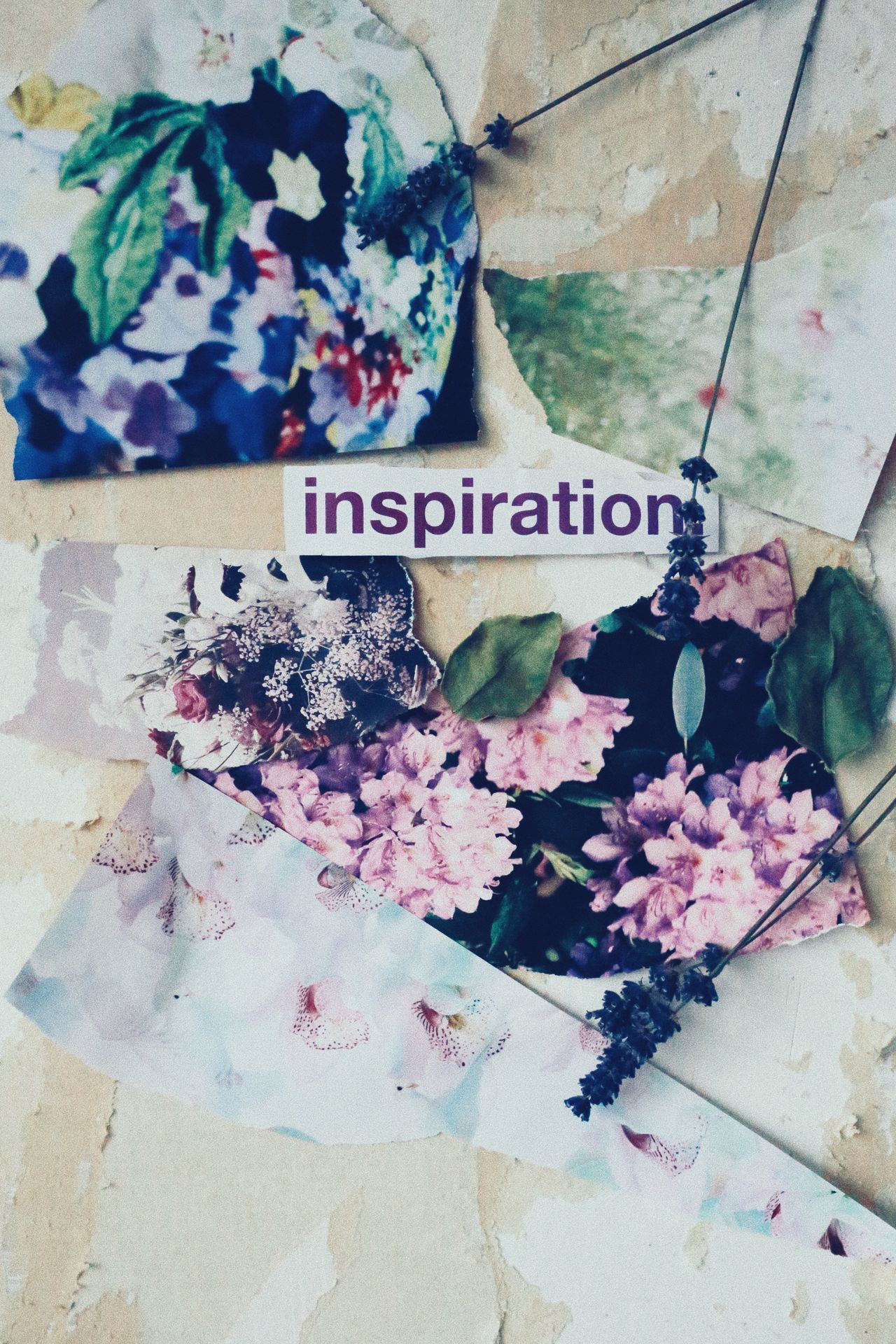 Flower Text No People Freshness Day Fragility Nature Beauty In Nature Outdoors Close-up Architecture Flower Head Background Layers Wallpapers Still Life Photography Words Conceptual Message Inspired Inspirational Inspirations Inspiration Abstract Indoors
