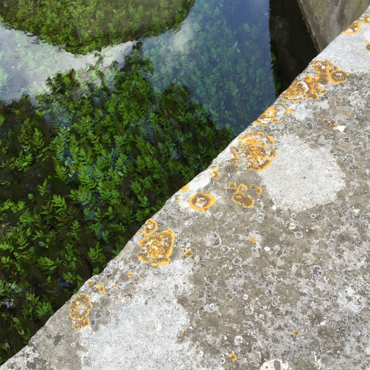 France Occitanie Gard Stone Material Outdoors Day Chanel The South Nature_collection Nature Photography Bridge Channel