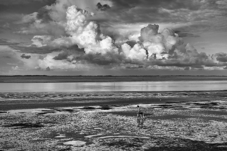 ✨Der Weg✨Herbert Grönemeyer Sea Beach Horizon Over Water Cloud - Sky Tranquility Beauty In Nature Sea View Sea_collection Light And Shadow Eyeem Market From My Point Of View Walking Around Taking Pictures Sky Photography Sky_ Collection The Week On EyeEm Tranquility Dramatic Sky Mud Flat Muddy Track Mudflats Way To Go Black And White Collection  Black And White Walking Black & White Photography Lost In The Landscape Connected By Travel EyeEmNewHere Second Acts Perspectives On Nature Rethink Things Postcode Postcards Be. Ready. Black And White Friday Step It Up One Step Forward EyeEm Ready   AI Now An Eye For Travel