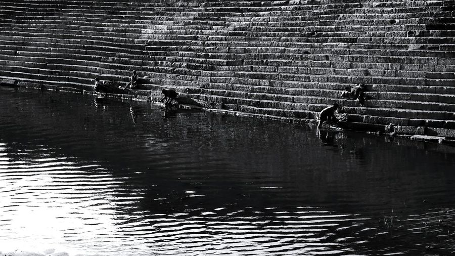 Badami India Badami By The Lake Black & White Blackandwhite Blackandwhite Photography Karnataka India Indiapictures Incredible India Water Reflections StoneStairs Stone Steps Stone Stairs