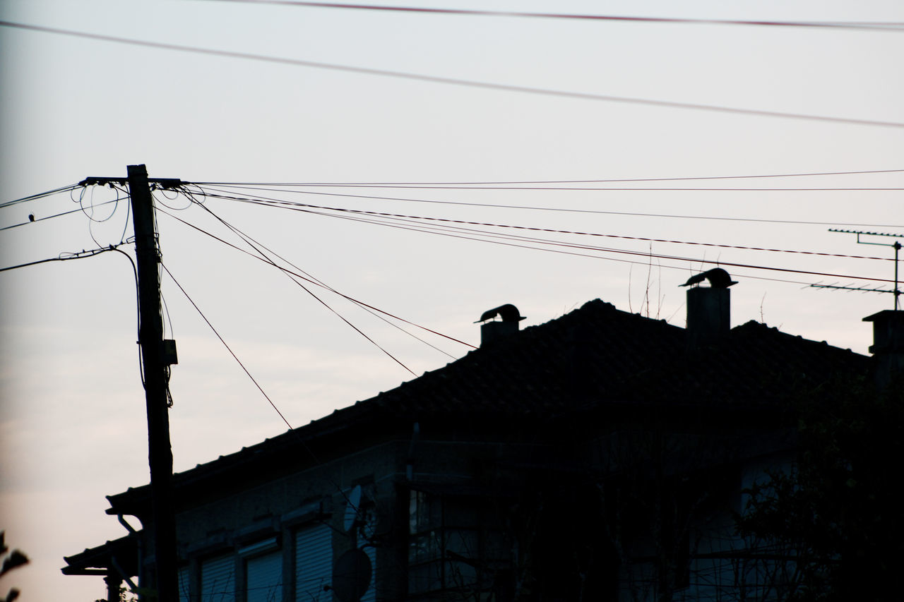 cable, connection, power line, low angle view, silhouette, architecture, building exterior, built structure, technology, power supply, electricity pylon, electricity, outdoors, day, animal themes, bird, sky, telephone line, clear sky, no people, perching, television aerial