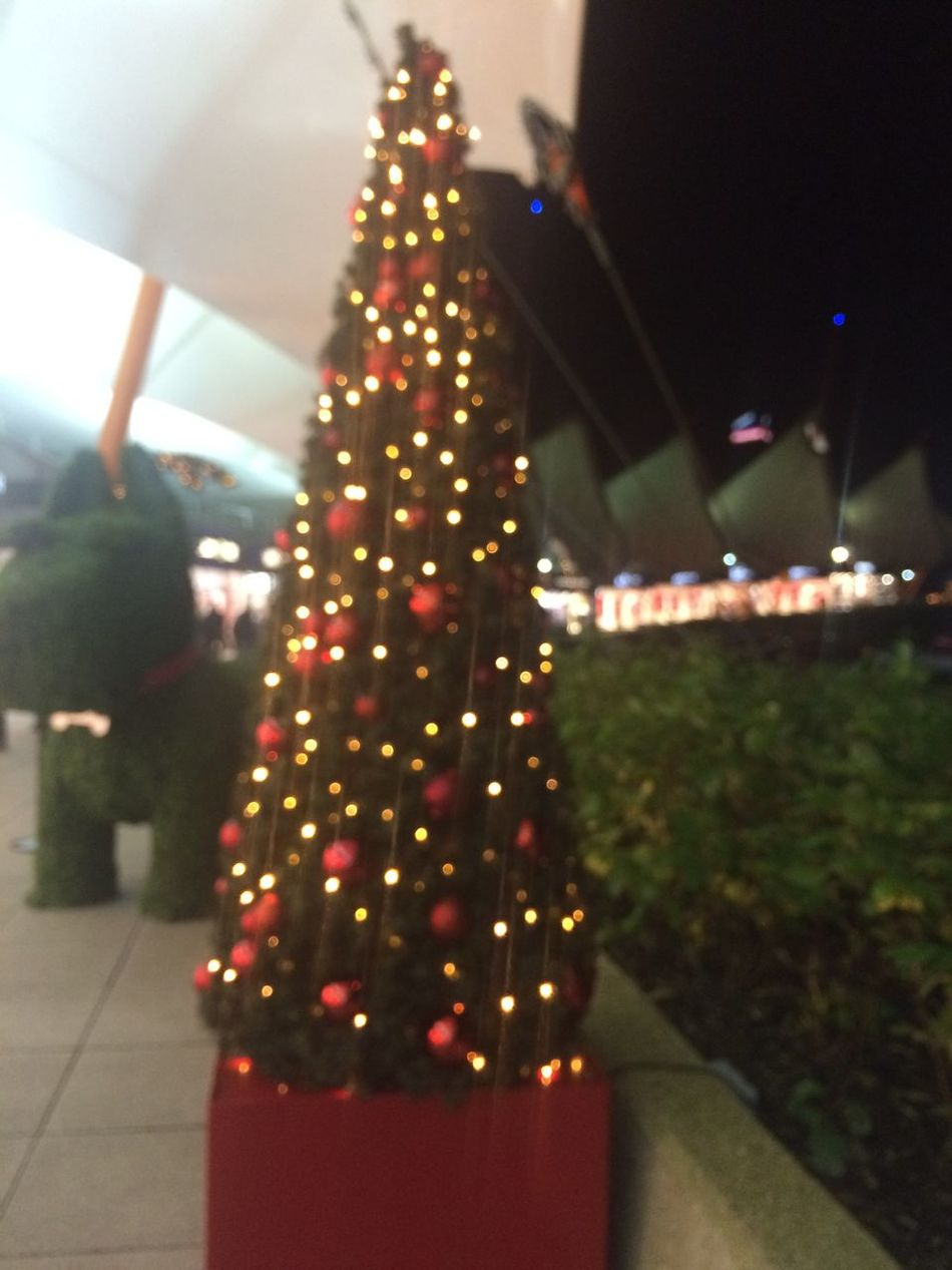 Shopping Mall Christmas Decorations Ashford Outlet Christmas Time Christmastree Christmas Lights Christmastime Christmas Tree