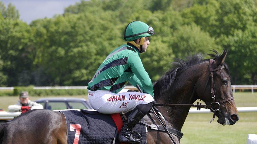 Horse Racing Hannover Pferderennbahn Auf Der Bult Event Horse Riding EyeEm Best Shots Horse
