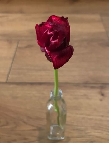 Flower Petal Nature Freshness Beauty In Nature Fragility Flower Head Vase Rose - Flower Table Close-up Red Plant No People