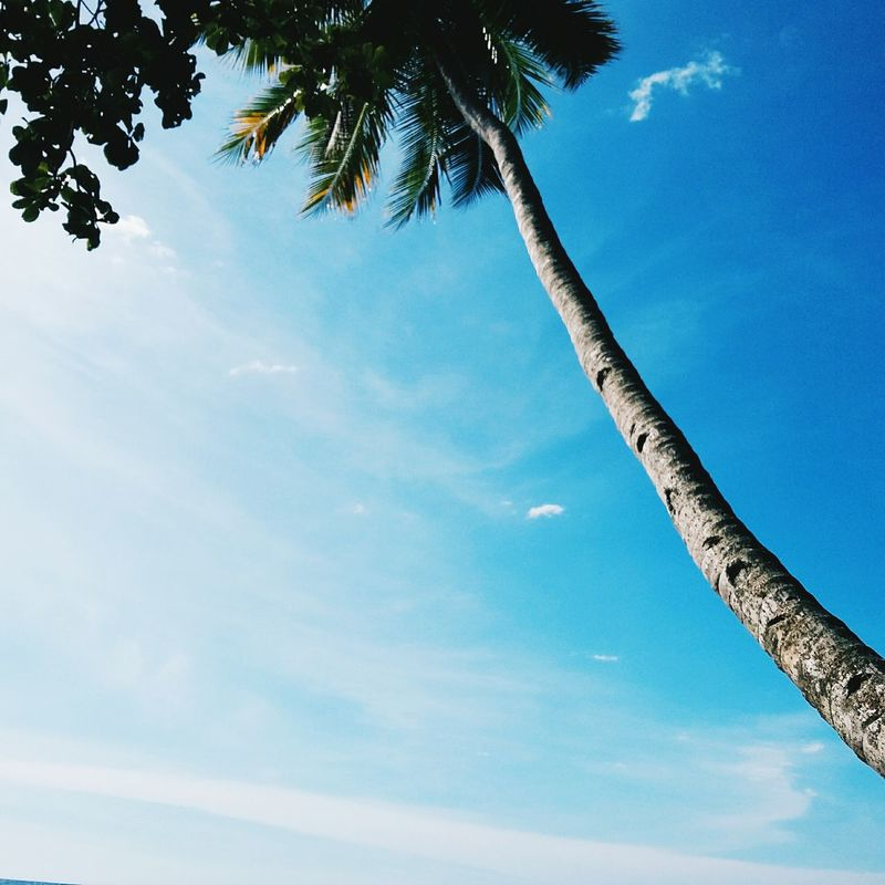 ⛅⛅⛅ Holidayescape Catalyst PhonePhotography Eyeemphillipines Untold Stories Relaxed Life Is A Beach Philippines Nature Photography
