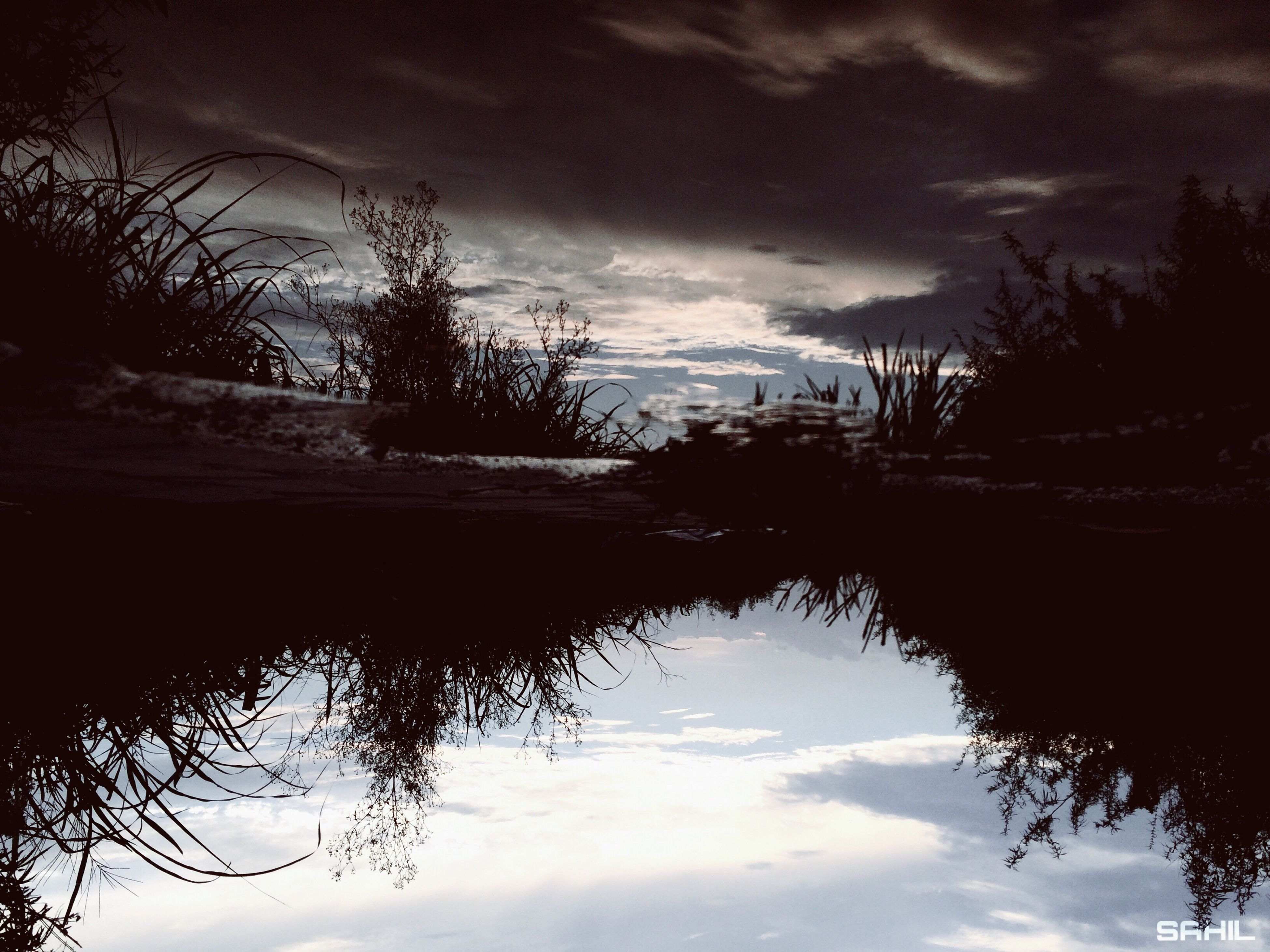 water, reflection, sky, waterfront, calm, tree, tranquil scene, lake, tranquility, bare tree, cloud - sky, scenics, cloud, silhouette, standing water, branch, nature, beauty in nature, outdoors, cloudy, water surface, non-urban scene, majestic, reflected, no people, outline