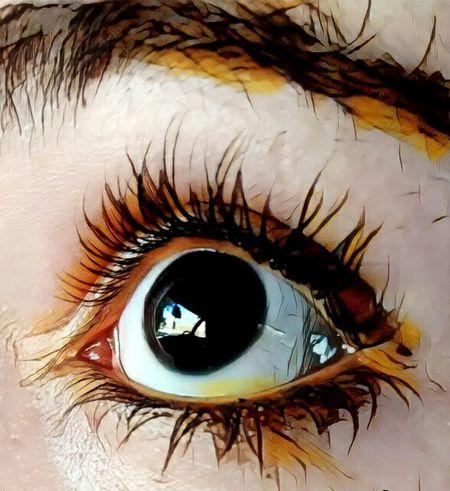 Human Eye Beauty Women