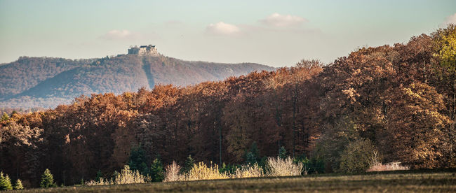 Autumn Beauty In Nature Castle Cloud Day Hohenneuffen Landscape Medieval Mountain Nature No People Outdoors Sky Southern Germany Swabian Alb Tree Wood