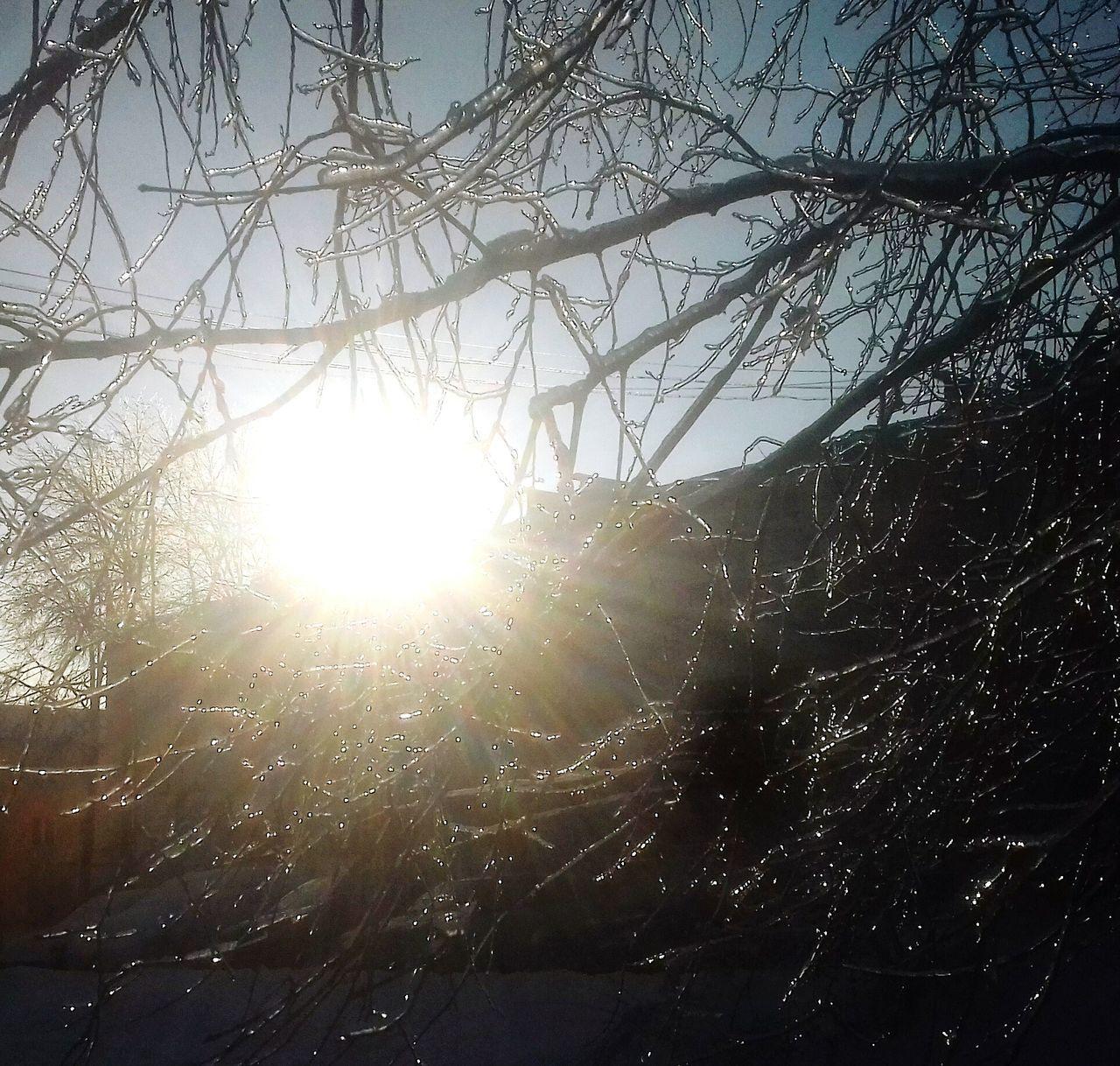 Snow ❄ Sanny_day ☀