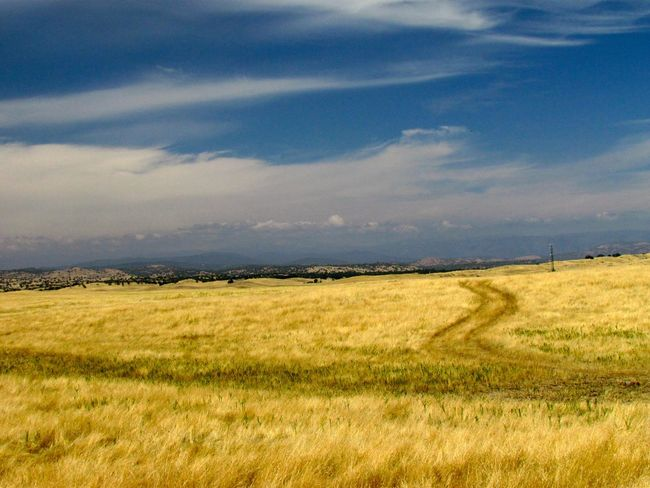 California Gold Rush California Landscape Landscape_collection Cloud - Sky Day Field Golden Fields Grass Landscape Nature No People Outdoors Road To Nowhere Rural Scene Scenics Sky Tranquil Scene Nature's Diversities