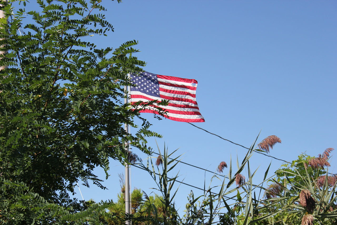 American Flag. American Flag Blue Clear Sky Flag Low Angle View National Flag Outdoors Patriotism