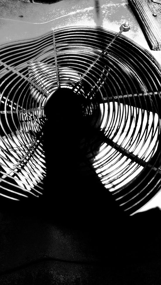 The Impurist My Bw Obsession Distortion Spin The Black Circle Aunt Pearl's Jam A/c Cooling My Shadow Capturing Movement Bw_friday_challenge Musical Photos https://youtu.be/O8v09-wlFiM