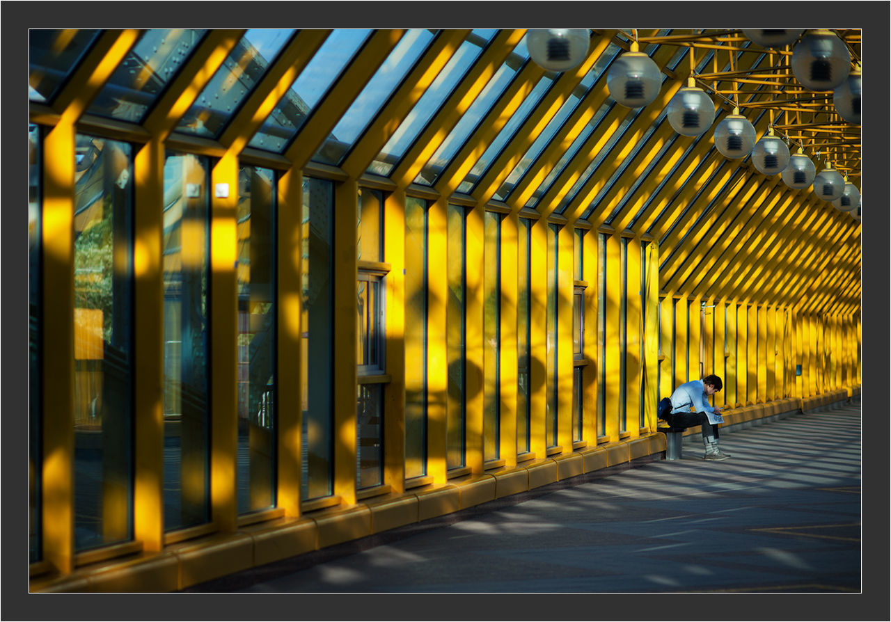 Day Modern Yellow One Man Mood Man Canon 5d Mark ıı Canon EF 100-400 L IS USM