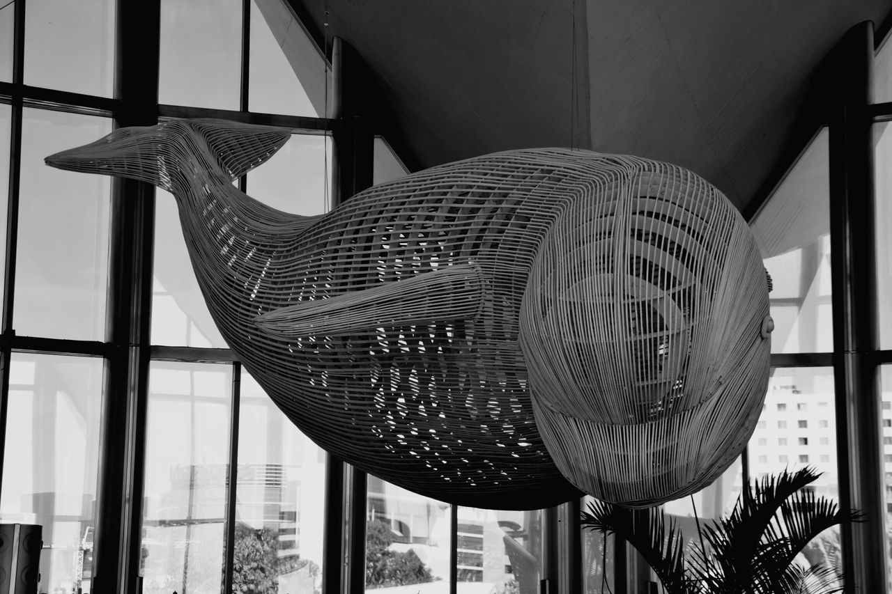 Whale Statue Oceanographic Black & White Blackandwhite Black&white Black And White Blackandwhite Photography Black And White Photography Blackandwhitephotography Blacknwhite Black And White Collection  Black & White Photography Blackandwhitephoto