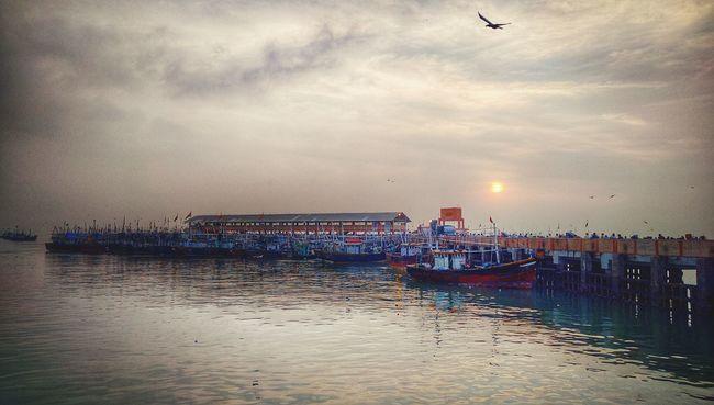 Fish Market Princess Docks Bhau Cha Dhakka Mumbai Sunrise