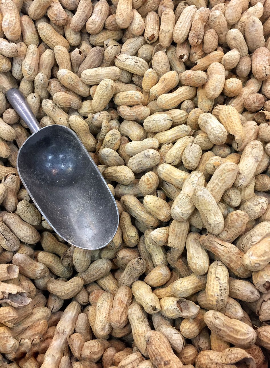 Peanuts Peanut Healthy Eating Food Food And Drink Large Group Of Objects No People Serving Scoop Close-up Multiple Nuts Metal