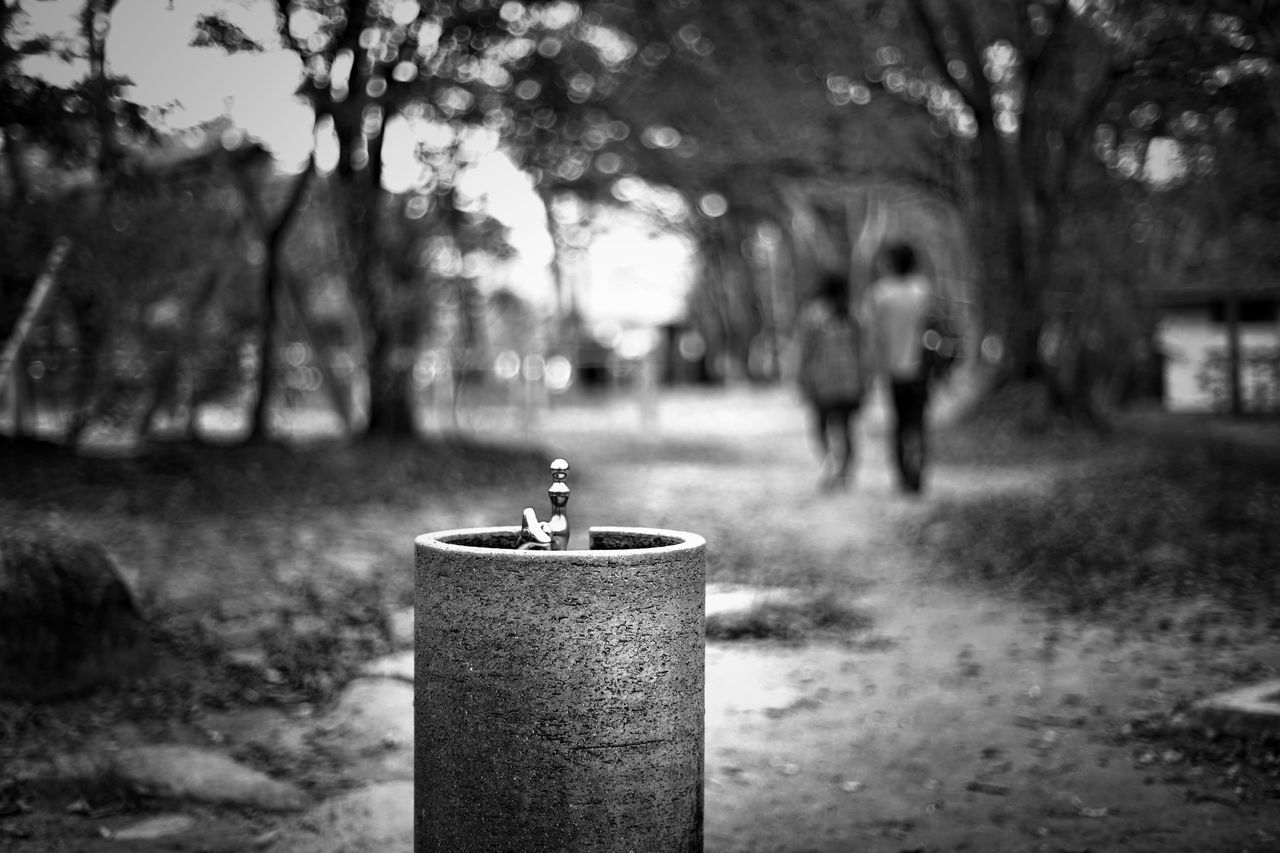 Capture The Moment Focus On Foreground Object Photography Park Depth Of Field Walking People Silhouette Streetphoto_bw Street Photography Uzu St. Selective Focus Composition Scenics Fine Art Tranquil Scene Light And Shadow Depth My Year My View Black And White Detail Oldlens Zeiss EyeEm Best Shots 16_12