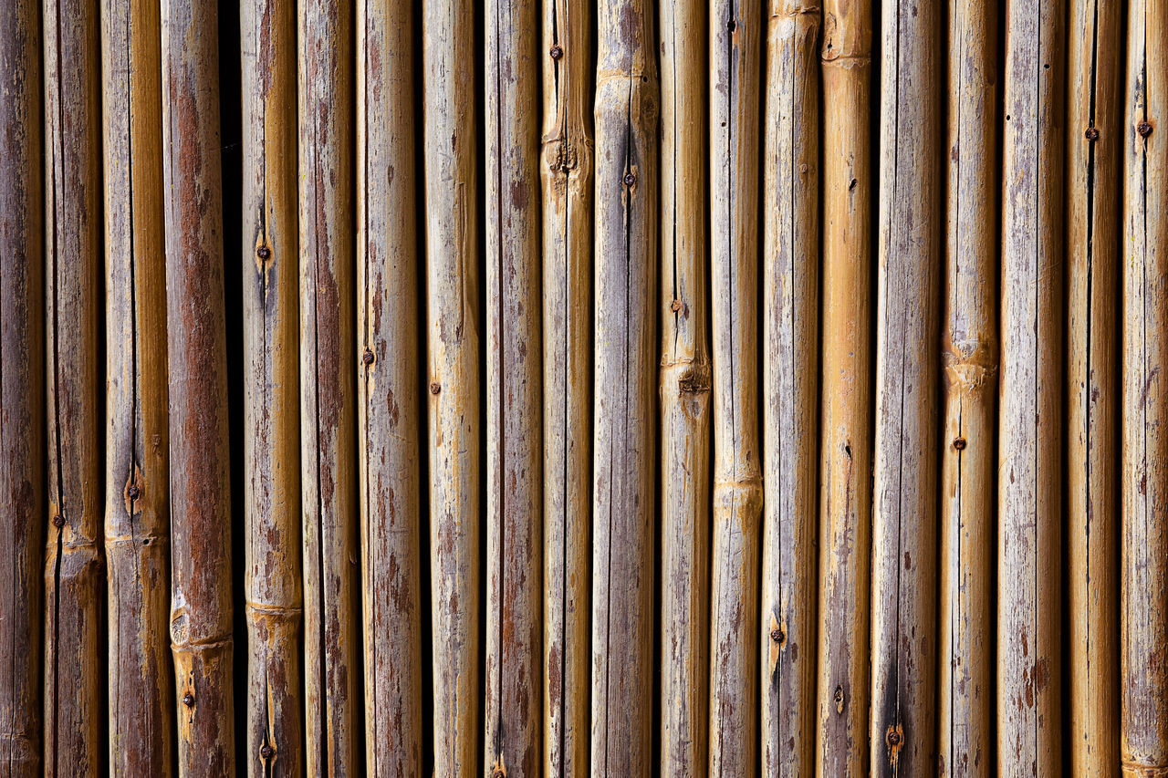 Bamboo Wall Abstract Backgrounds Bamboo Bamboo Fence Bamboo Wall Close-up Day Design Detail Full Frame In A Row No People Outdoors Pattern Repetition Side By Side Textured  Showcase June Fine Art Photography Maximum Closeness Beautifully Organized My Year My View Finding New Frontiers