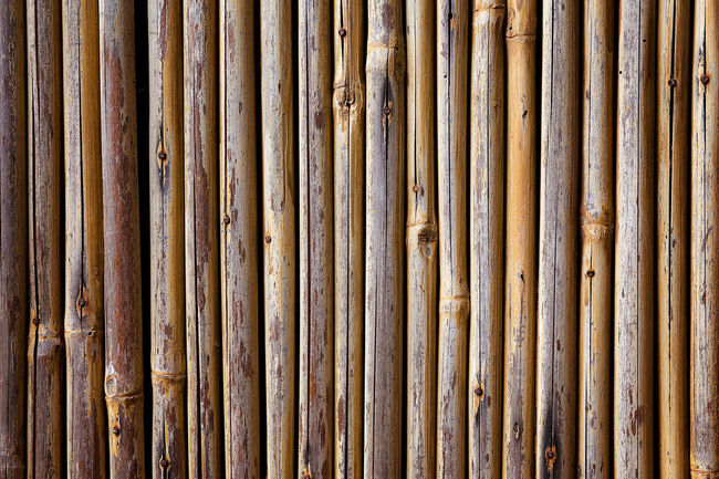 Bamboo Wall Abstract Backgrounds Bamboo Bamboo Fence Bamboo Wall Close-up Day Design Detail Full Frame In A Row No People Outdoors Pattern Repetition Side By Side Textured  Showcase June Fine Art Photography