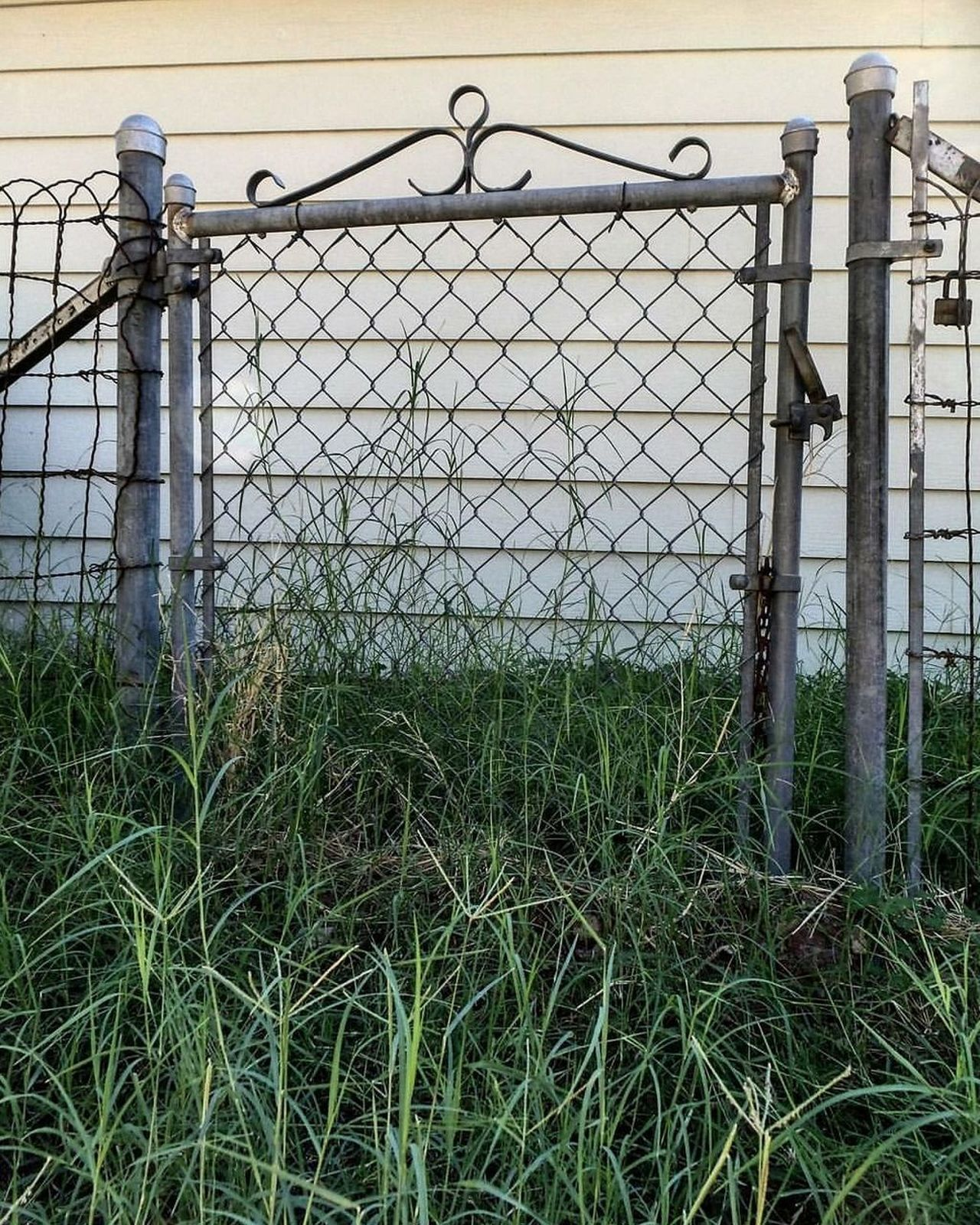 Fence Security Protection Chainlink Fence Grass Outdoors Low Angle View Beauty In Nature Beauty Of Nature EyeEmBestEdits BestofEyeEm BestEyeemShots EyeEm Best Shots EyeEm Vision Premium Collection