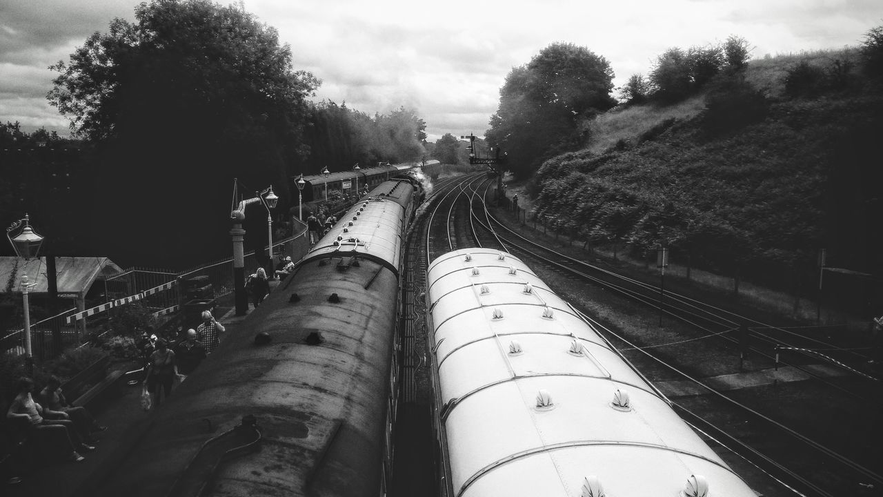 train - vehicle, transportation, tree, railroad track, rail transportation, day, outdoors, no people, sky