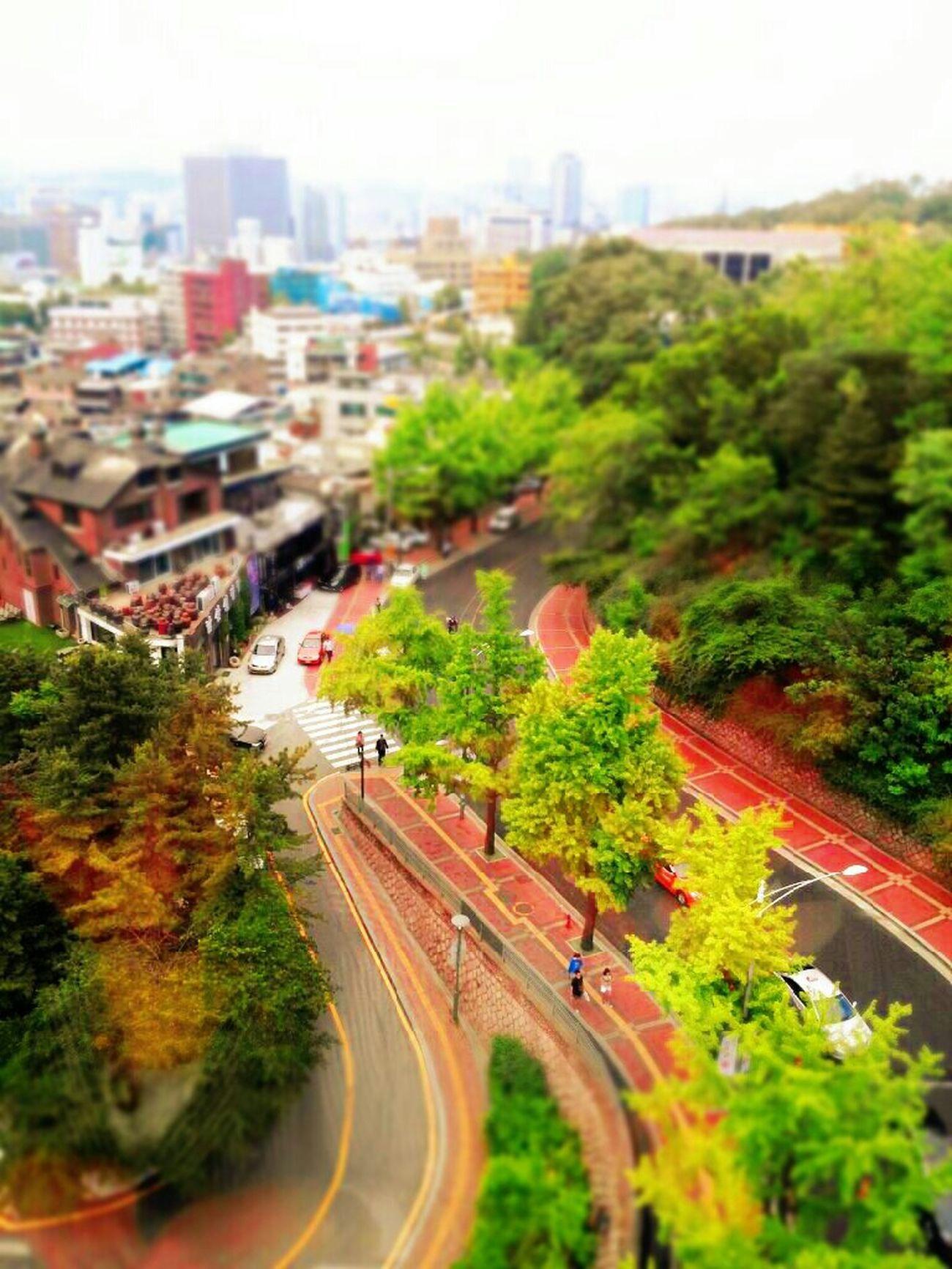 Landscape Enjoying Life Toy World