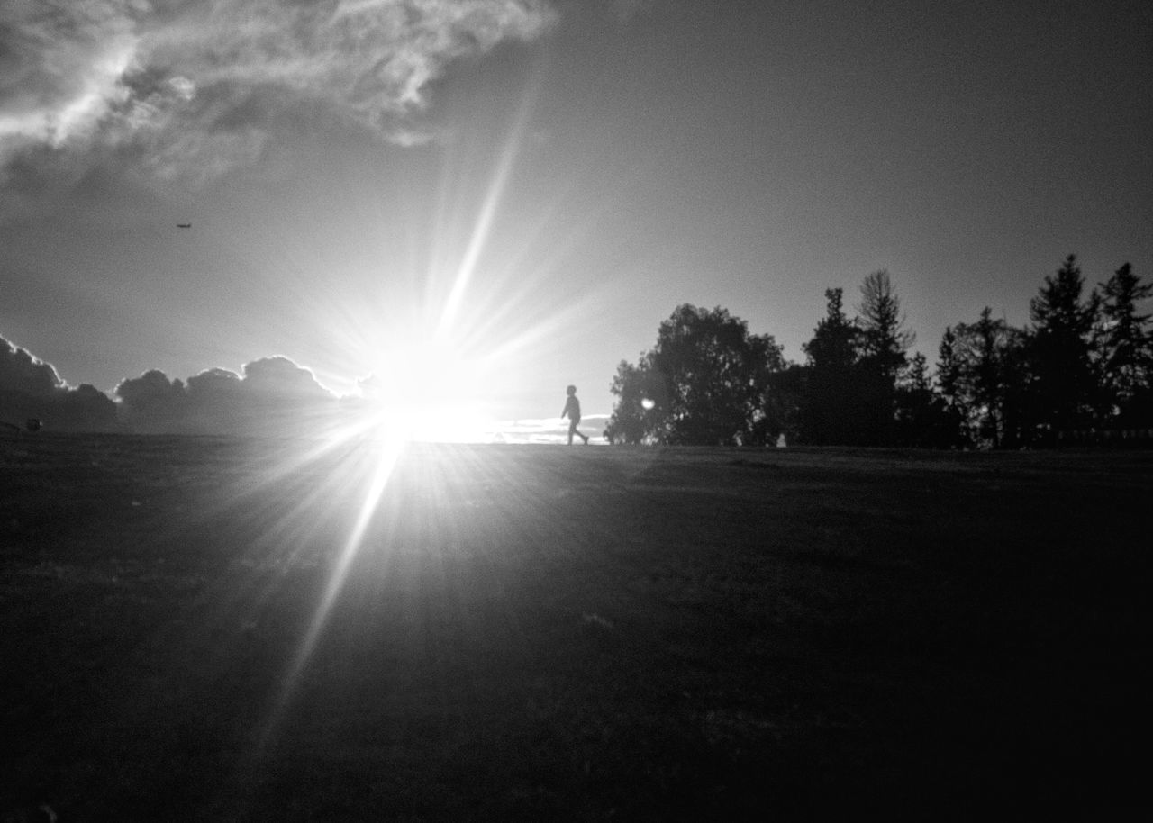 Adapted To The City Sunlight Sunbeam Full Length Tree Lens Flare Sky Sun Outdoors Leisure Activity Nature One Person Bkack&withe Blackandwhite Mobilephotography Oneplus2
