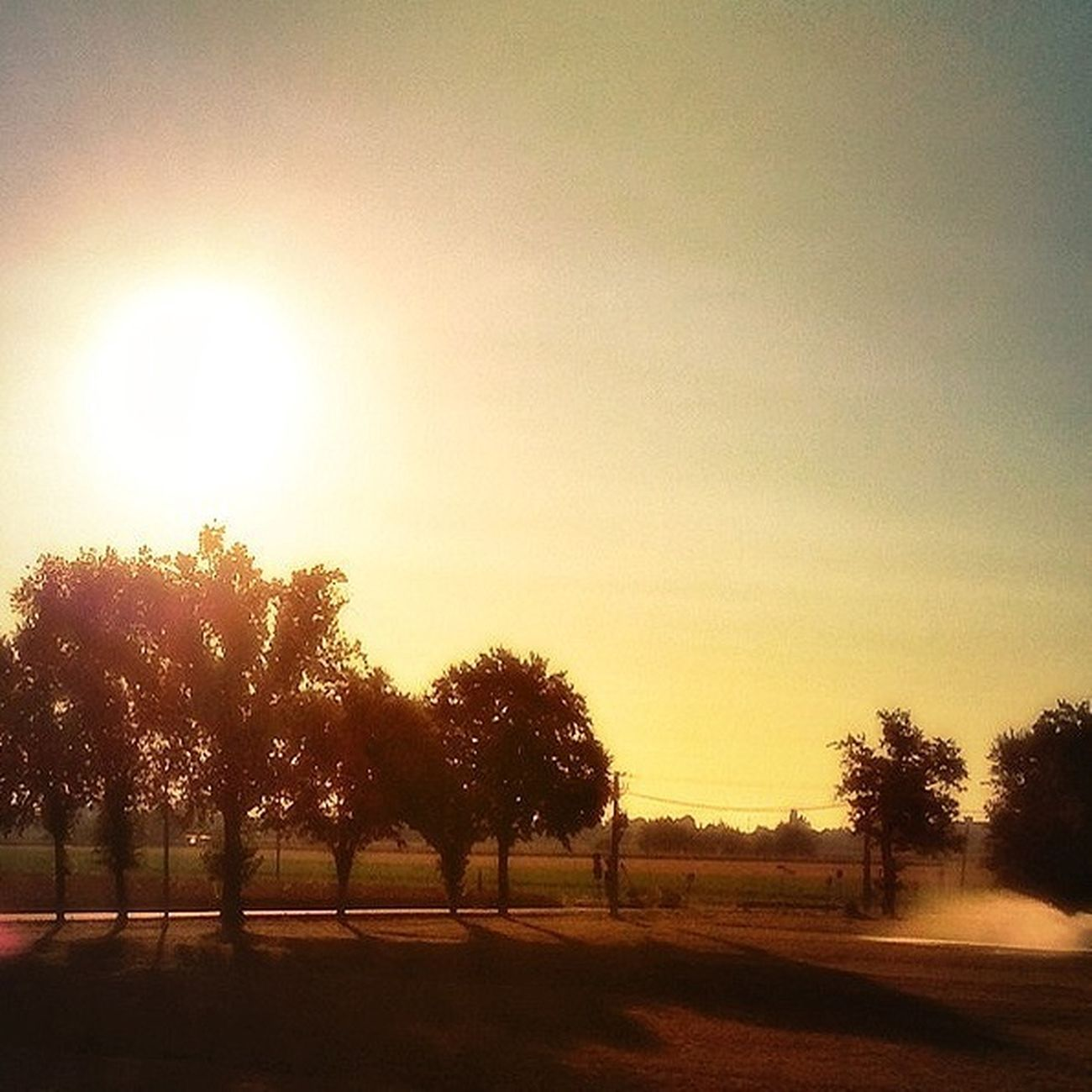 caldo sole color oro Sky Skyline Nature Sunny Day