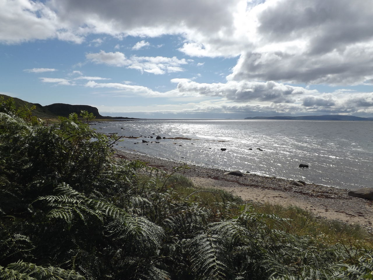 Beach Beauty In Nature Coastline Day Fern Ferns Horizon Over Water Isle Of Arran  Landscape Nature No People Outdoors Plants Scenics Scotland Sea Sea And Sky Silver Water Sky